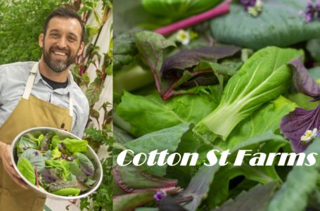 Cotton St Farms – Conoce y Vive con Nathaly Sachez