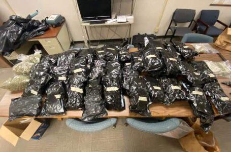 Multiples arrestos por más de $50,000 en marihuana